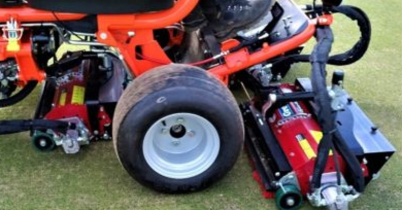 Voice of a Greenkeeper: August 2019 Tips